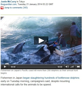 Dolphin_slaughter